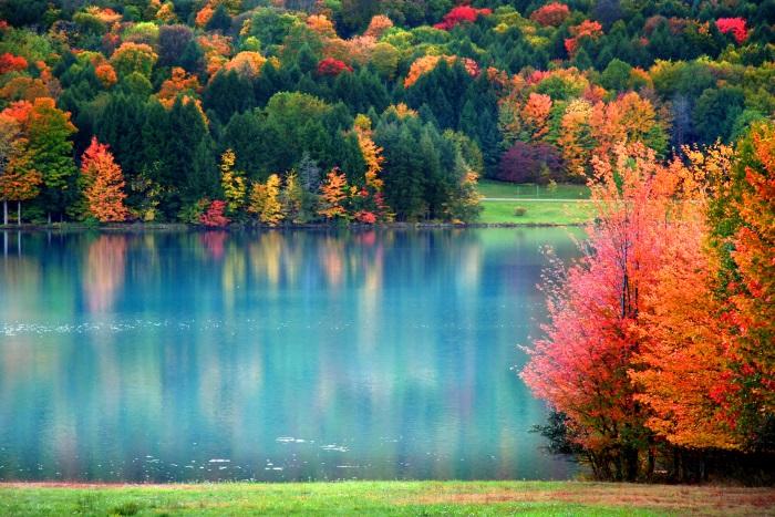 Pentru o stare de bine, afla care sunt culorile benefice in fiecare zi a saptamanii!