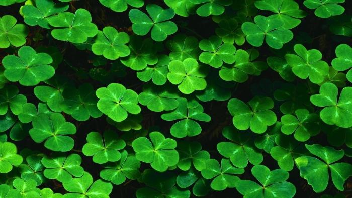 Semnificația culorii verde