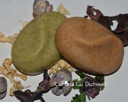 Sapunuri de casa pentru par din ingrediente 100% naturale